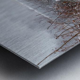 Winter ap 2708 Metal print