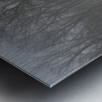 Treeline & Buck apmi 1548 Metal print