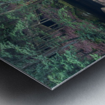 Near Cedar Falls apmi 1632 Metal print