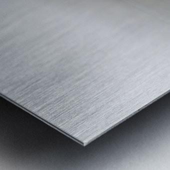 Profile Lake ap 2192 Metal print