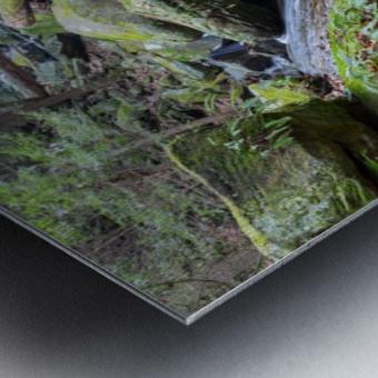 Kildoo Run apmi 1750 Metal print
