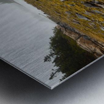 Low Tide ap 2271 Metal print