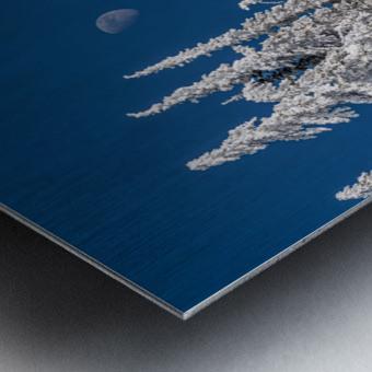 Alpine moon Metal print