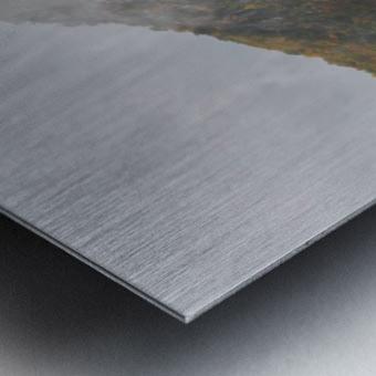 Seneca Rocks apmi 1881 Metal print