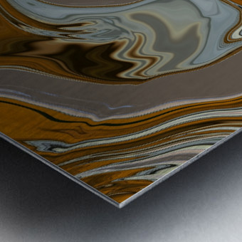 Reflection in Chrome Metal print