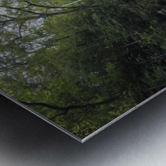 Harrison Wright Falls Metal print