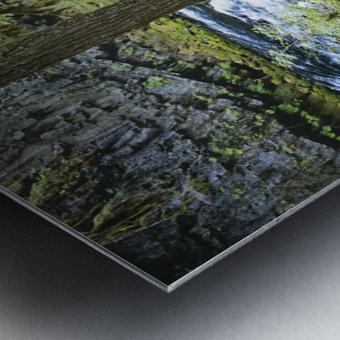 The Mckenzie River Metal print