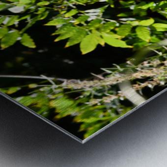 THE TINY MESSENGER collection 1-4 Metal print