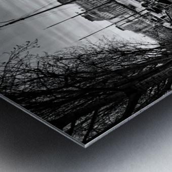 Ile de la Cite flood Impression metal