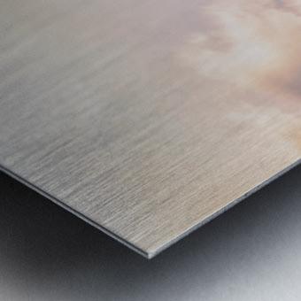 Top Of The Tent Metal print