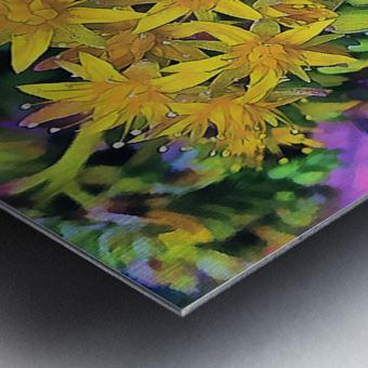 Echeveria Hybrid With Yellow Flowers Metal print