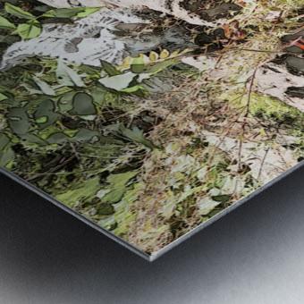 A FAIRY TALE STORY -Art- Photo  1-4  Metal print