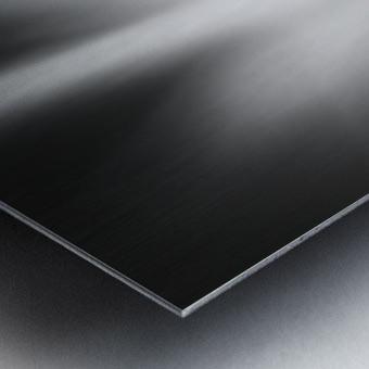 Defense Metal print