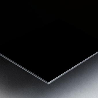 reduci C933220D Metal print
