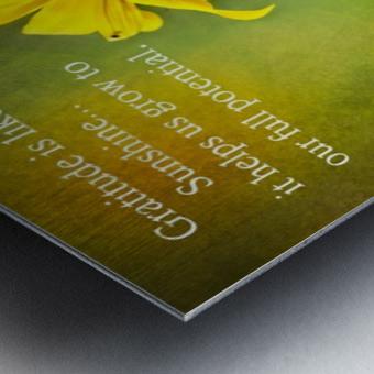 Gratitude is Like Sunshine Metal print