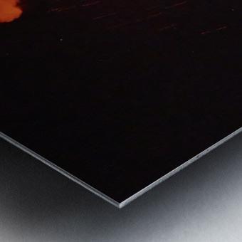 56B0F6BD FF51 47A5 90AD 8290F94BCA4D Metal print