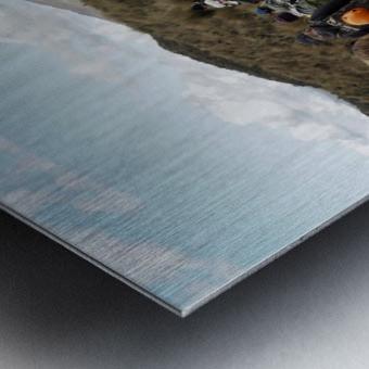2CAEEB24 3011 46FC 848B 1952A02E0E6D 1 102 a Metal print