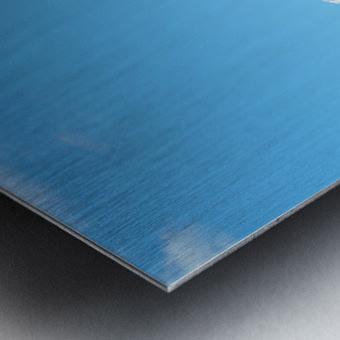 4AC2DAA8 F088 42F8 984A F2C96F02A281 Metal print