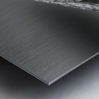 24810937 454A 4C55 B80D 39BE65C2F639 Metal print