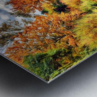 Autumn River Metal print