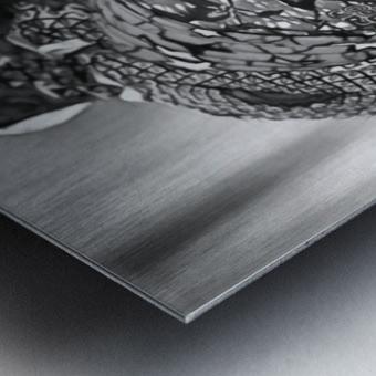 africa 1 Metal print