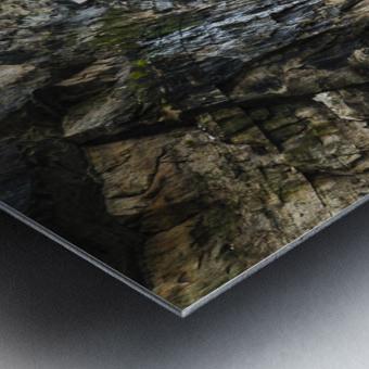 Land Meets Water Metal print