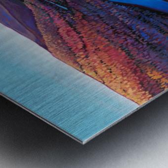 Fall Arrives at Peace River Metal print