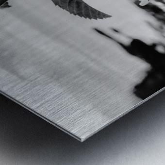 Elegance  Metal print