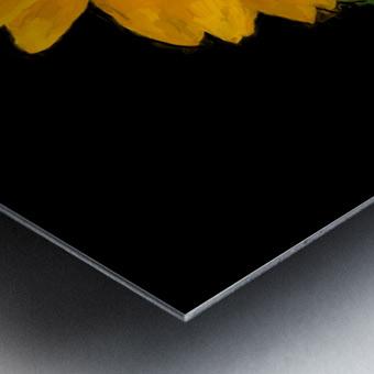 Solitary Sunflower Metal print