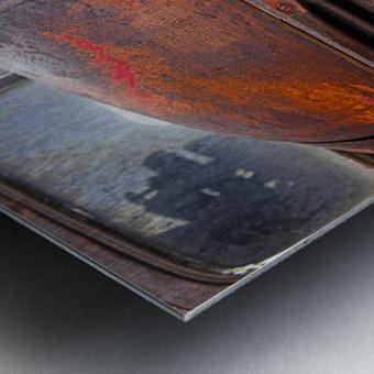 Belle vieille carcasse - Beautiful Old Carcass Metal print