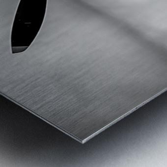 Spitfire Backside Limited Edition 50 Prints only Metal print