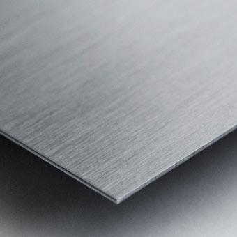 A Gray Day Metal print