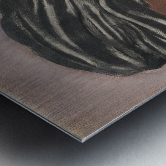 RA 004 - פיראט - Pirate Metal print