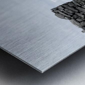 Opened Door Metal print