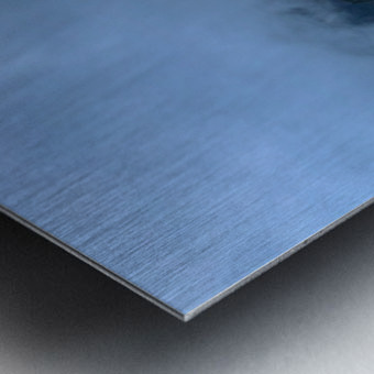 76EB2A53 D340 44C0 82BC E52D62DAB2CB Metal print