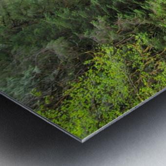 Natures Waterslide Metal print
