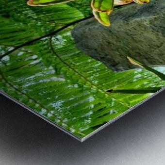 The Greenhouse Metal print
