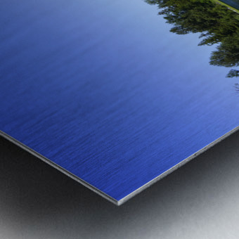 Alder Lake and Mount Rainier Pacific Northwest United States Metal print