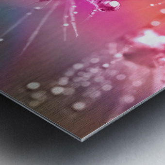 drop of water Metal print