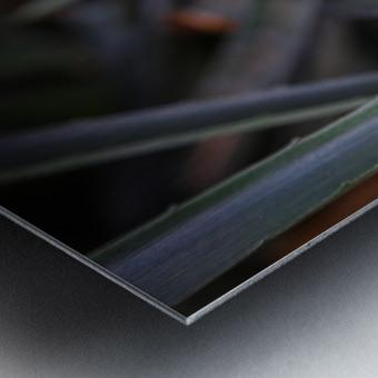The Color Of Life Metal print