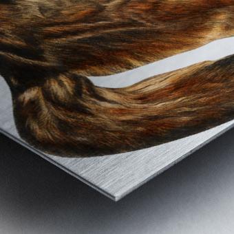 Fox Print | British Wildlife Art | A3 A4 A5 | Fox Lover Gift | Fox Illustration | Fox Painting | Fox Nursery Wall Art | British Animal Print Metal print