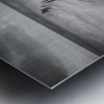 200113  P67 TRI X 002A Metal print
