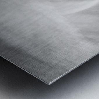 190925 LR66 Panchro400 011A Metal print