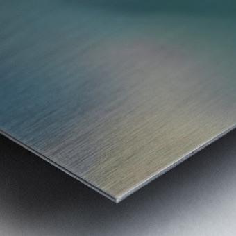 Night Wave Metal print