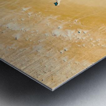 dronebeach1 Metal print