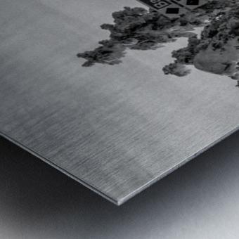 Quiet Ease Metal print