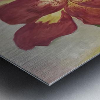 Canna Metal print