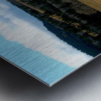 LS029 Metal print