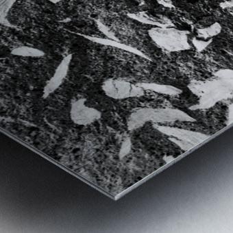 RA016 Metal print