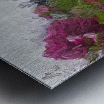 Seeing What Monet Saw Metal print